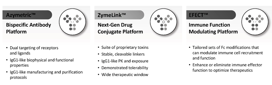 ZYME-20201231_G4.JPG