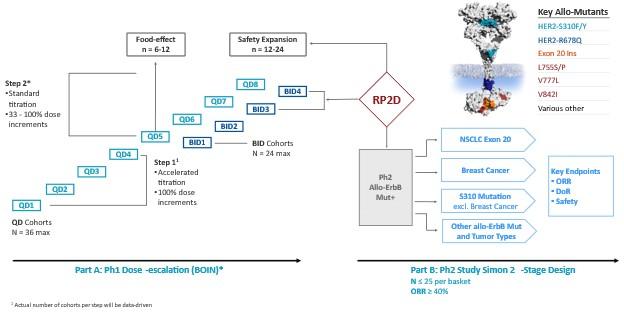 BDTX-20201231_G13.JPG